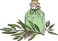 Teatree essential oil for keloids